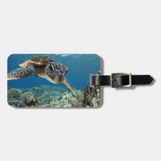 Hawaiian Green Sea Turtle Luggage Tag