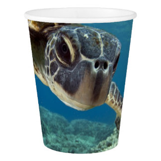 Hawaiian Green Sea Turtle Paper Cup