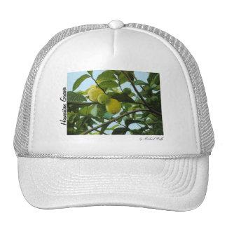 Hawaiian Guava Cap