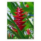 Hawaiian Heliconia Card