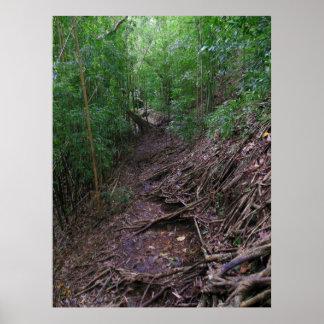Hawaiian Hiking Trail Print