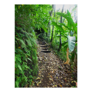 Hawaiian Hiking Trail Poster