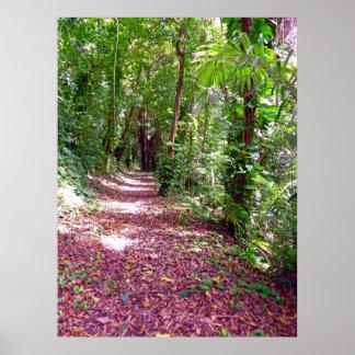 Hawaiian Hiking Trail Posters