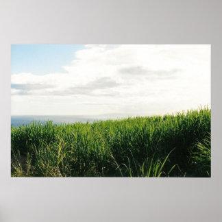 Hawaiian Horizon Poster
