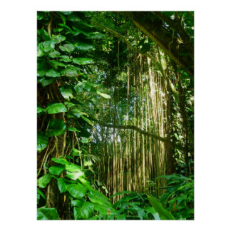 Hawaiian Jungle Vines Poster