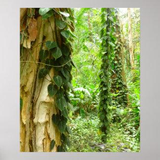 Hawaiian Jungle Vines Poster