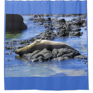 Hawaiian Monk Seal Sunbathing Shower Curtain