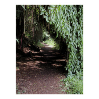 Hawaiian Natural Vine Tunnel Poster