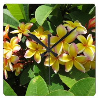 Hawaiian Plumeria Square Wall Clock