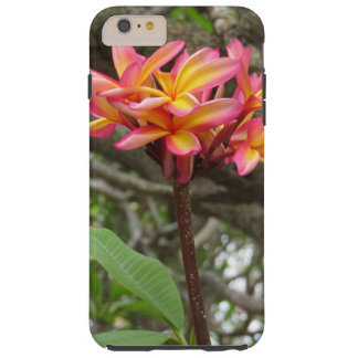 Hawaiian Plumeria Tough iPhone 6 Plus Case