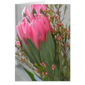 Hawaiian Protea Flowers Card