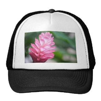 Hawaiian Red Ginger Flower Cap