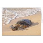 Hawaiian Sea Turtle Greeting Card