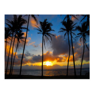Hawaiian Sunrise Postcard