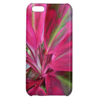 Hawaiian Ti Plant iPhone 5C Cases
