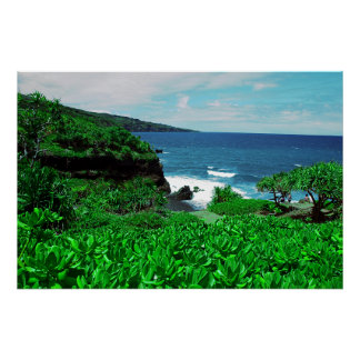 Hawaiian Tropical Shoreline With Tropical Plants Poster
