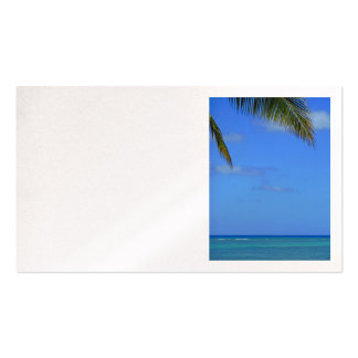 Hawaiian Waters Pack Of Standard Business Cards
