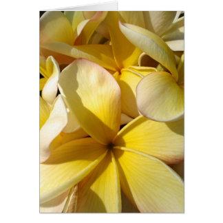 Hawaiian Yellow Plumeria Card