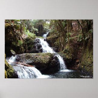 Hawaiin Waterfalls Poster