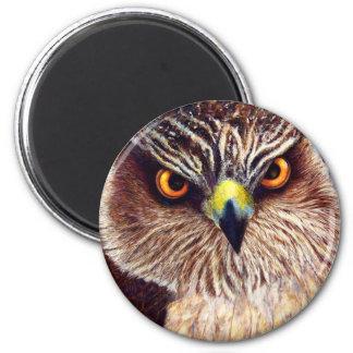 Hawk 6 Cm Round Magnet