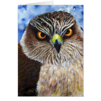 Hawk Eyes Greeting Card