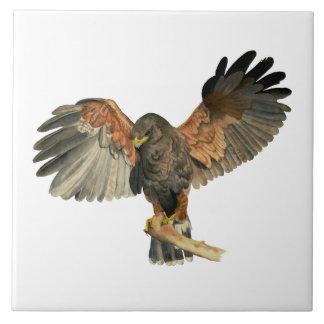 Hawk Flapping Wings Watercolor Painting Ceramic Tile