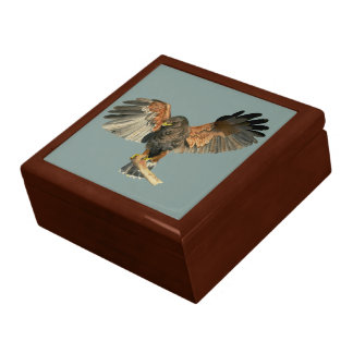 Hawk Flapping Wings Watercolor Painting Gift Box