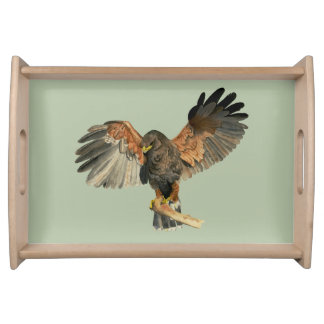 Hawk Flapping Wings Watercolor Painting Serving Tray