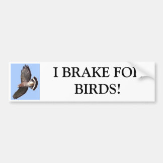 Hawk, I BRAKE FORBIRDS! Bumper Sticker