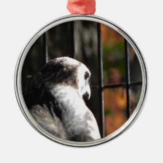 Hawk in a bird sanctuary Silver-Colored round decoration