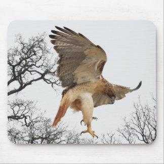Hawk in Flight Mousepad