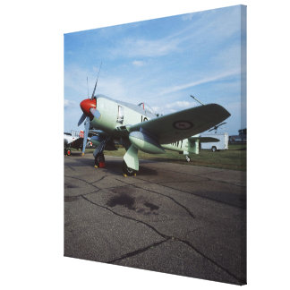 Hawker Sea Fury at CAF, Minnesota Wing, at the 2 Stretched Canvas Prints