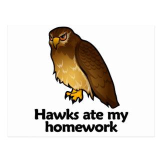 Hawks ate my homework postcard