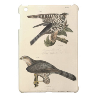 Hawks Case For The iPad Mini