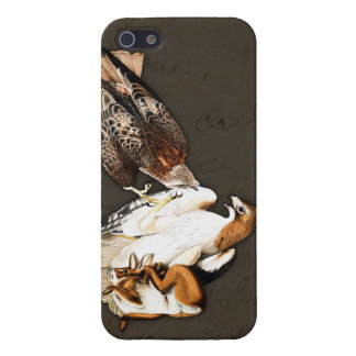 Hawks Hunt Vintage iPhone 5/5S Cases