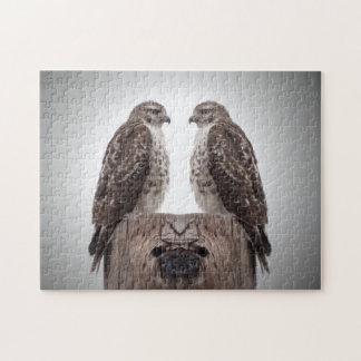 Hawks on a post jigsaw puzzle