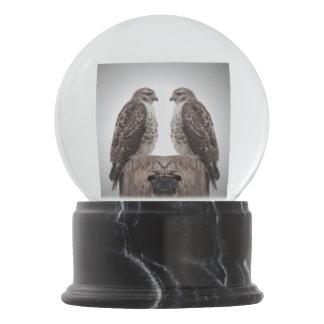 Hawks on a post snow globe