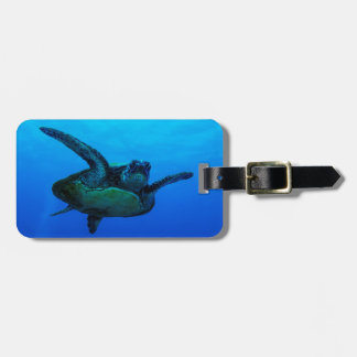 Hawksbill Sea Turtle Luggage Tag