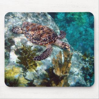 Hawksbill Sea Turtle, US Virgin Islands Mouse Pad