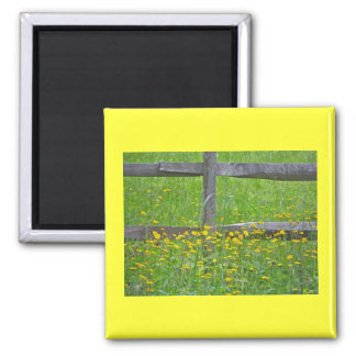 Hawkweed at Split Rail Fence Matching Items Square Magnet