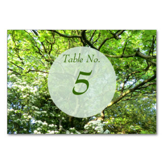 Hawthorn & Oak Handfasting Table Card