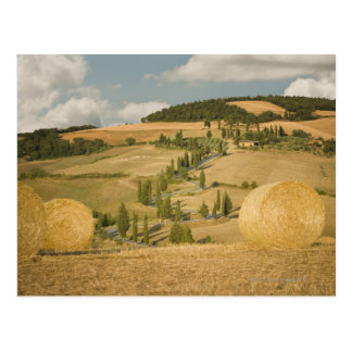 Hay bale and rolling landscape, Tuscany, Italy Postcard