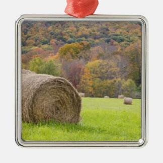 Hay bales and fall foliage on farm, metal ornament
