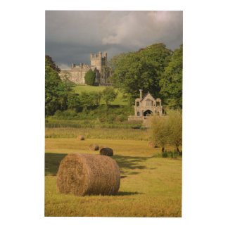 Hay Bales In Front Of Crom Castle Wood Wall Art