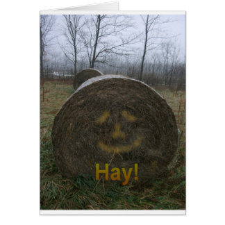 Hay! Card