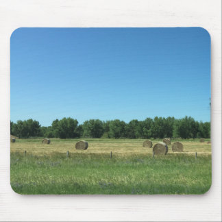 Hay Now Its a Mouse Pad - Frost Hill Farms