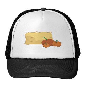 Hay & Pumpkins Mesh Hats