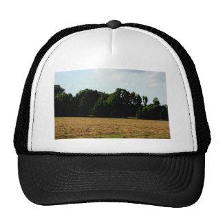 hayfield landscape cap