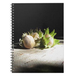 Hazelnuts on the table illuminated by the sunshine notebook