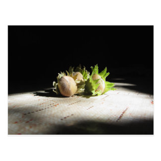 Hazelnuts on the table illuminated by the sunshine postcard